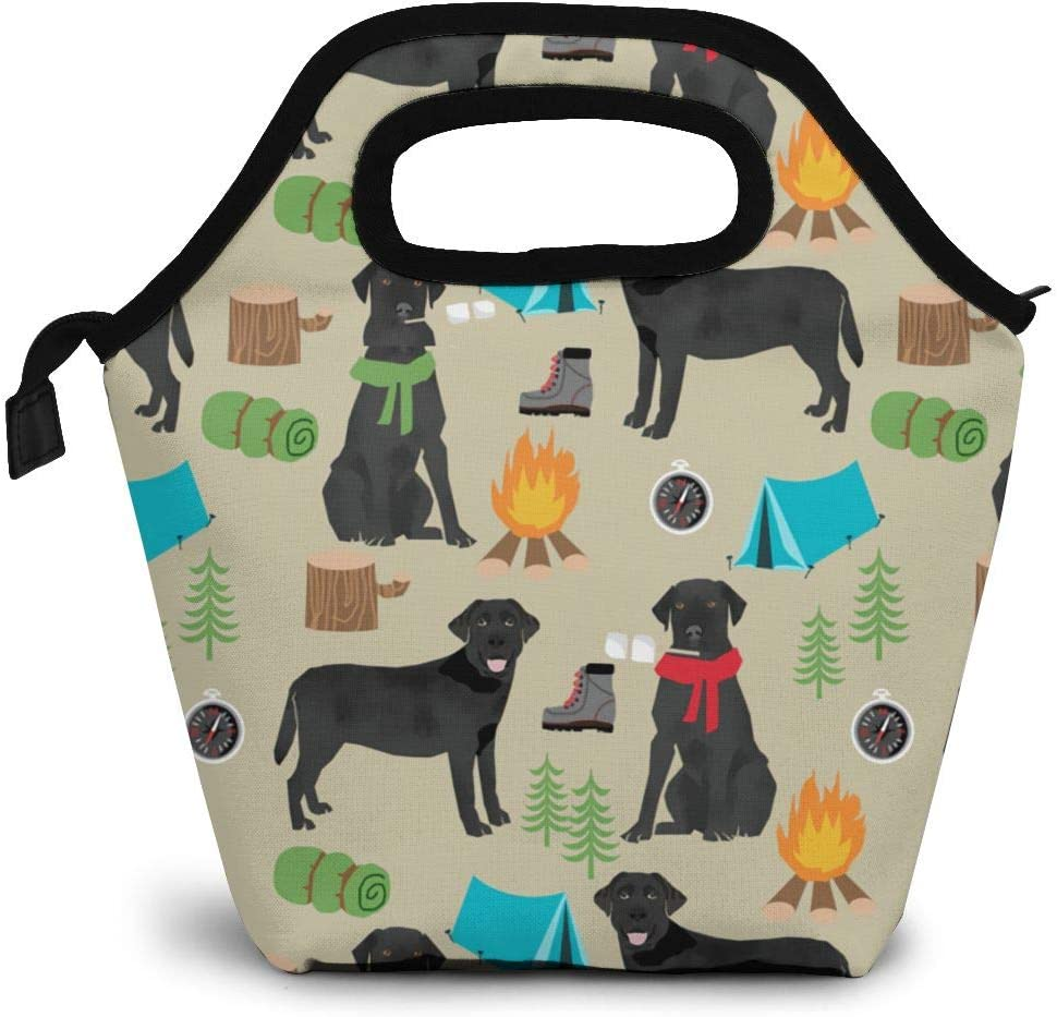 Lunch Box Black Lab Camping Tote Lunch Bag Insulated Waterproof Cooler Handbags with Zipper for Outdoor Travel Picnic School Office