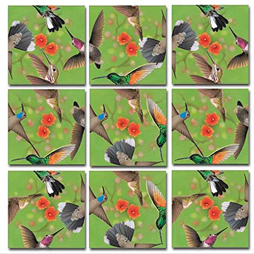 Birds Scramble Squares - Scramble Squares Hummingbirds 9 Piece Challenging Puzzle - Ultimate Brain Teaser and Mind Game for Young and Senior Alike - Engaging and Creative With Beautiful Artwork - By B.Dazzle