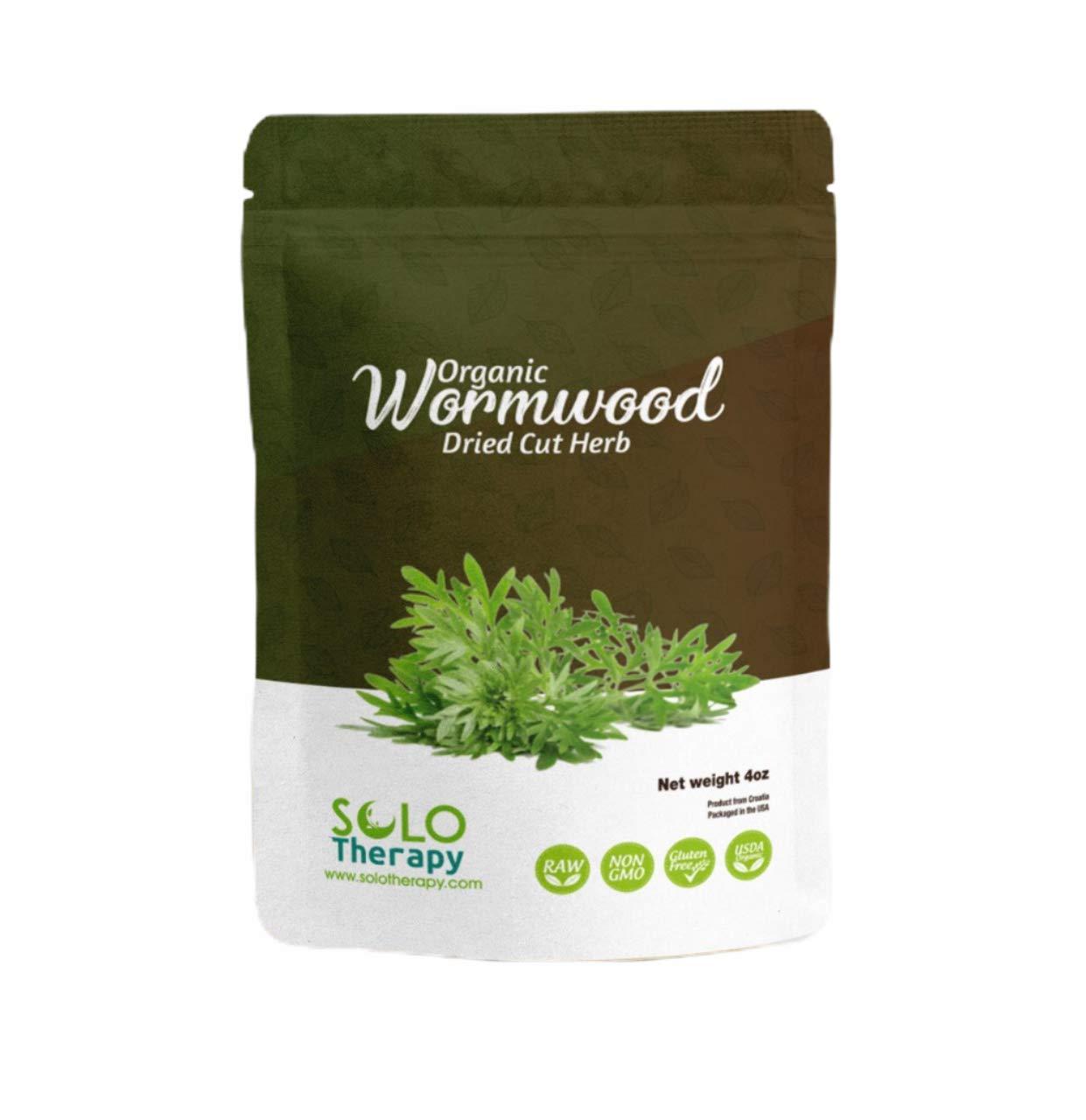 Artemisia absinthum WORMWOOD LIVE plant in 2.5 inch pot Medicinal Ajenjo