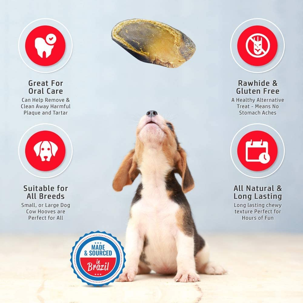Tasty Treat for Oral Hygiene Made from Grass Fed Cattle All-Natural Long Lasting Dog Chews Full-Size Cow Hooves for Dogs Fantastic Alternative for Rawhide and Bully Sticks
