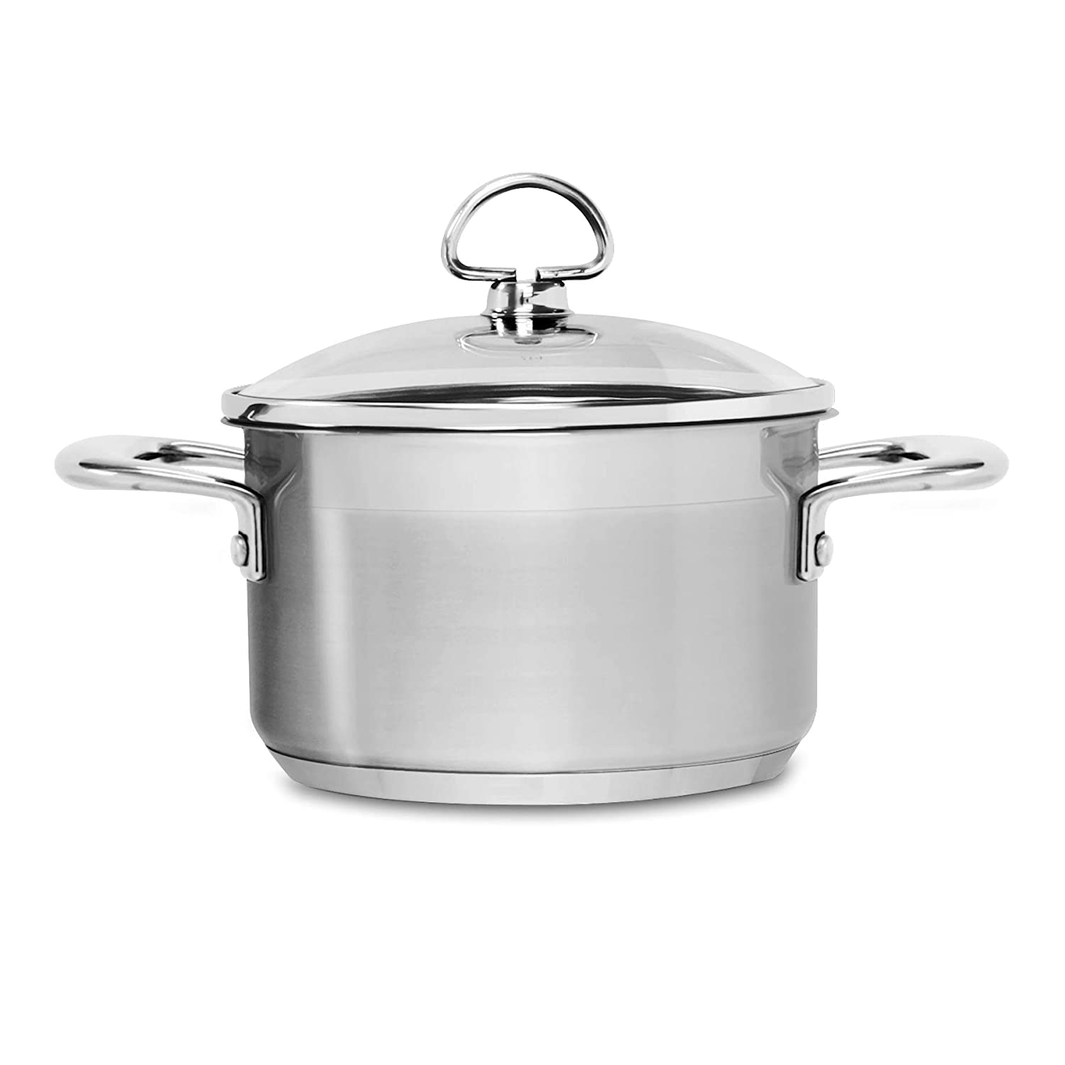 Chantal SLIN32-160 Induction 21 Steel Soup Pot with Glass Tempered Lid 2-Quart