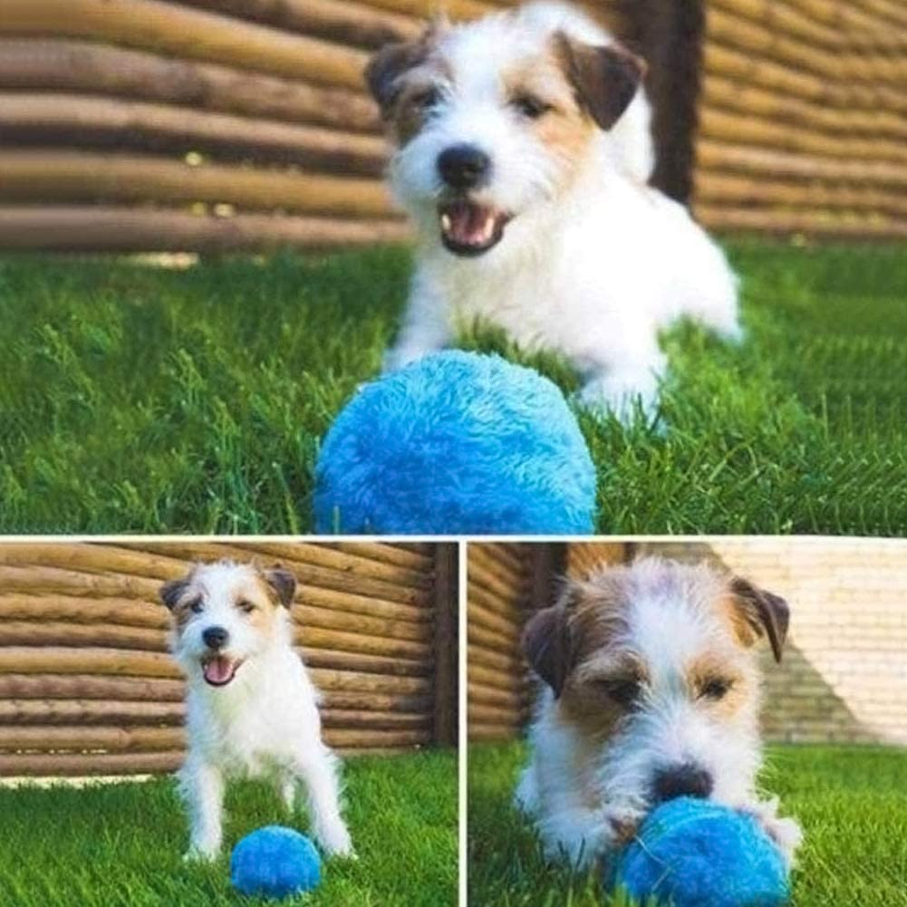 Mallalah Magic Ball Toy Electronic Cat Dog Rolling Ball Automático 4 Tapas Tapas Mascotas Cachorro Juguete Interactivo Diámetro 8 cm