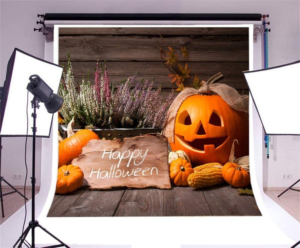 GoHeBe Happy Halloween Backdrop 10x10ft Vinyl Photography Background Ribbon Decors Pumpkin Lamp Small Cushaws Corns Flower Scene Wooden Floor Poster Chid Baby Shoot Trick Or Treat Theme Party