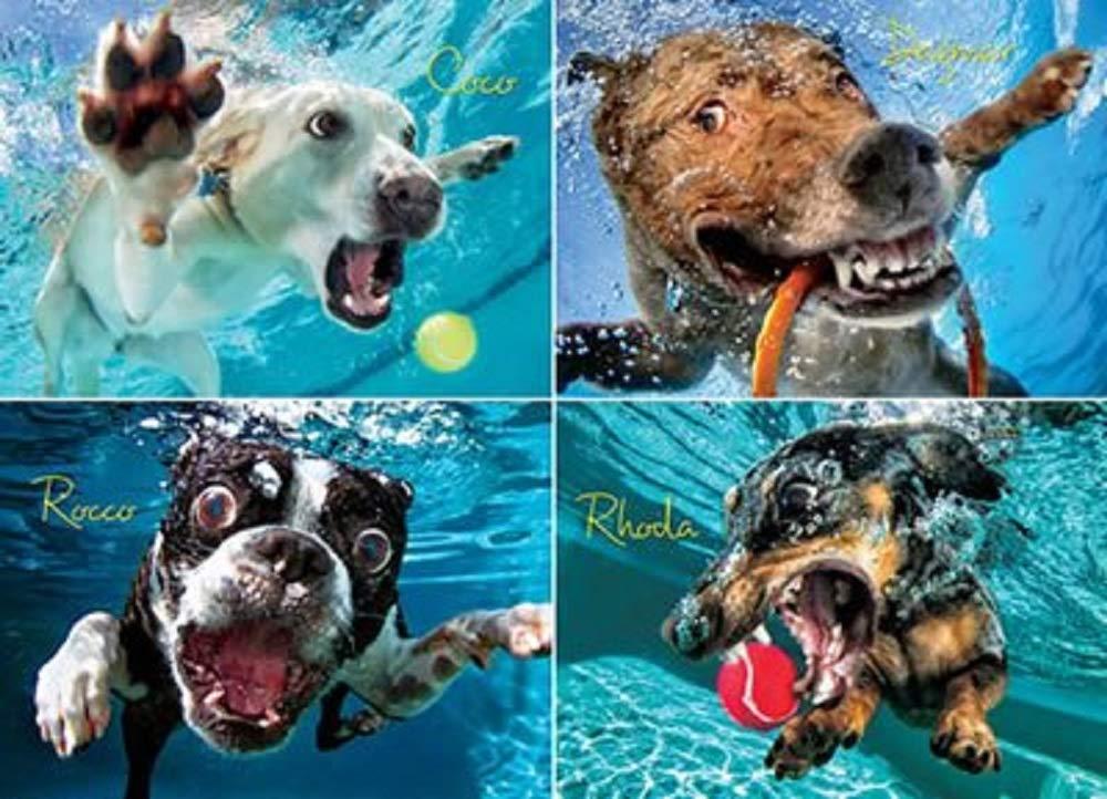 【正規品質保証】 Underwater Dogs Underwater :スプラッシュ1000 B07B5GBTFM Pieceパズルジグソーパズル27 x 19 in Dogs B07B5GBTFM, ball fields:8ec973ec --- a0267596.xsph.ru