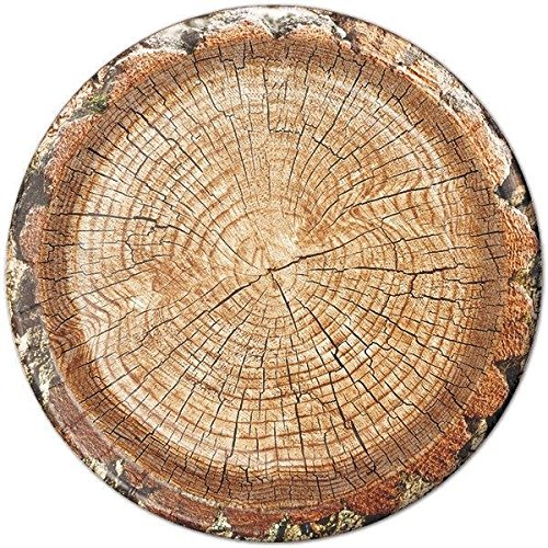 Cut Timber 9'' Lunch Plates - 24 count - Rustic, Country, Farm, Lumberjack Paper Party Plates for Birthday, BBQ, Picnic, Family Reunion by Birthday Direct