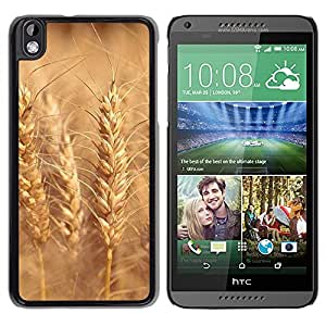 Be Good Phone Accessory // Dura Cáscara cubierta Protectora Caso Carcasa Funda de Protección para HTC DESIRE 816 // Nature Beautiful Forrest Green 187