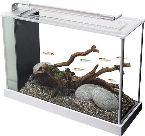 Fluval-Spec-V-Aquarium-Kit