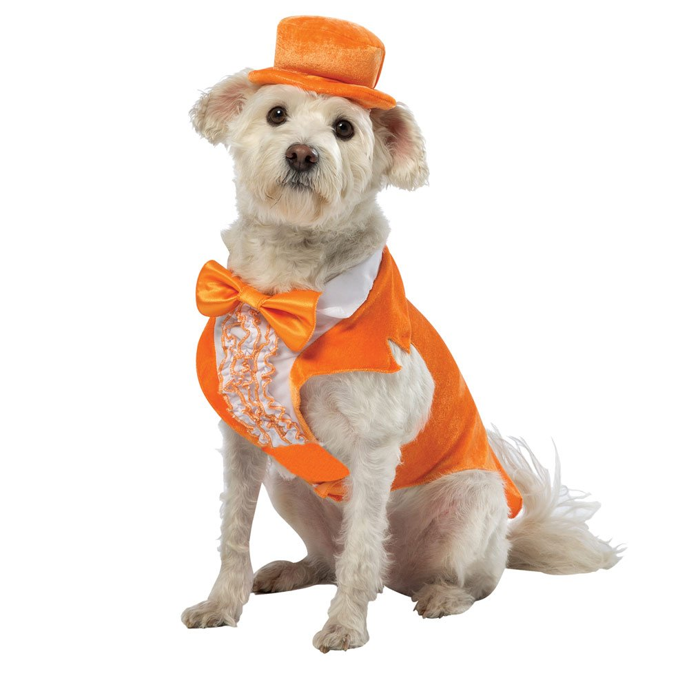 Dumb and Dumber Lloyd Pet Costume