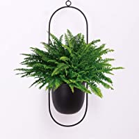 Sinolodo Metal Hanging Planters Boho Plant Hanger for Indoor Wall and Ceiling Hanging planters,Metal Black(Oval)