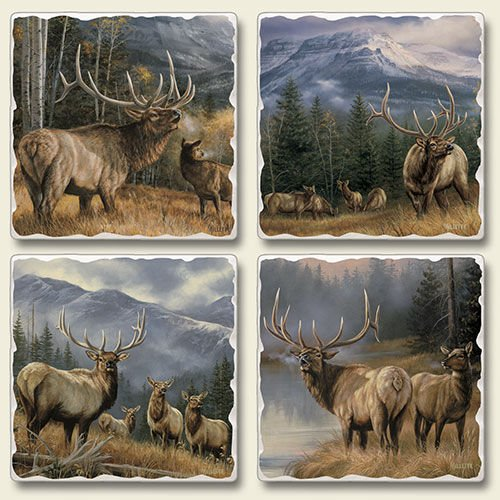 highland-graphics-mountain-meadows-set-of-four-absorbent-stone-coasters