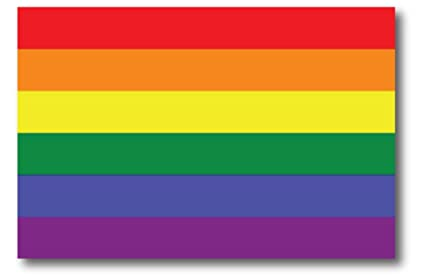 0a2cf828a3a6 Gay Pride Rainbow Flag Car Magnet Decal - LGBT - 4x6 - Waterproof Lesbian  Gay Bisexual