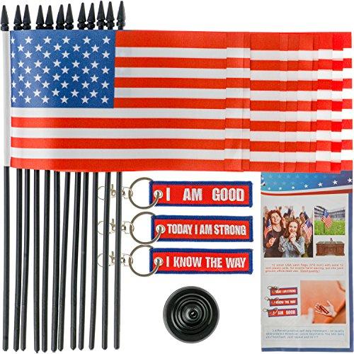 Set 12 American Mini Flag / Decorative Flags / Yard Flags /