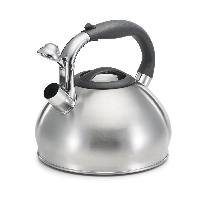 2.6qt Brushed Dome Tea Kettle