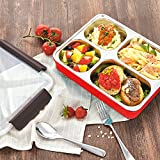 HOMESPON Bento Stainless Steel Lunch Boxes Thermoses with Dividers Leak Proof Insulated Food Containersfor Kids/Adults/School/Office/Work, BPA-Free-Three Color (4 Compartments/ Red)
