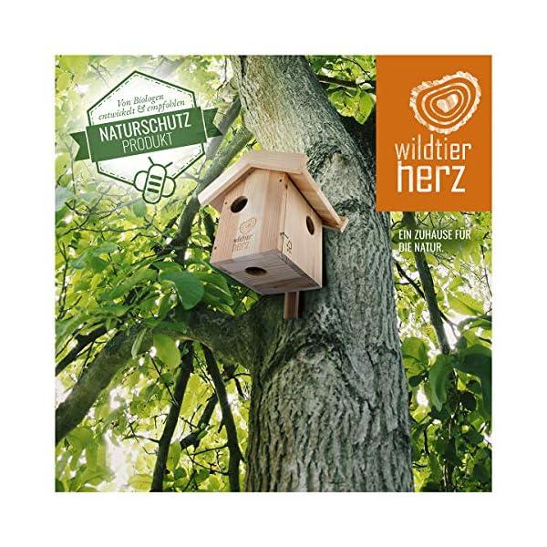 Nichoir pour Ecureuil en Bois – Maison pour Écureuils, Imperméable et Résistant aux Intempéries, Hotte pour Écureuil…