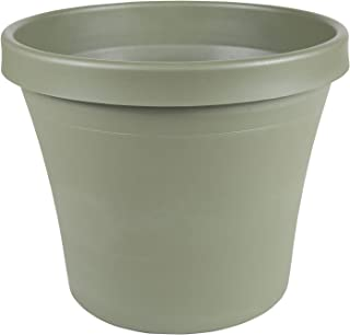 "product image for Bloem Terra Pot Planter - 14"" - Living Green"