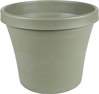 "product image for Bloem Terra Pot Planter - 12"" - Living Green"