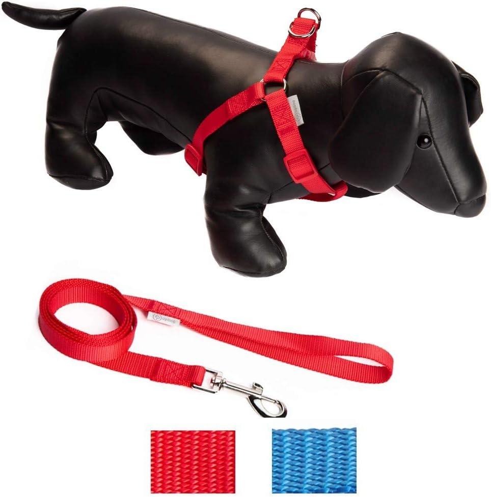 UPDOG Arnés para Perros Diferentes tamaños para Perros pequeños ...