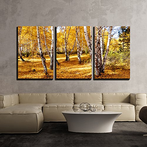 River Birch Leaves (wall26 - 3 Piece Canvas Wall Art - Nature Altaya Pleases Eye of the Artist in Any Season of the Year - Modern Home Decor Stretched and Framed Ready to Hang - 24