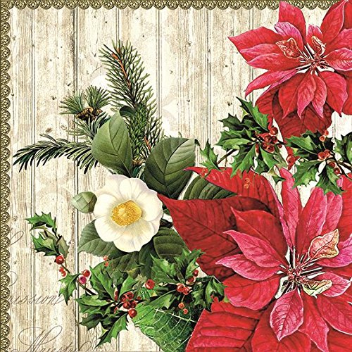 POINSETTIA HOLLY LEAVES CHRISTMAS EMBOSSED 13