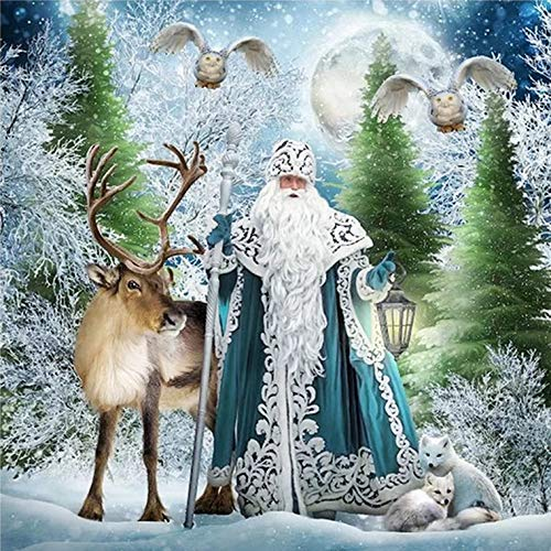 Deer & Santa Claus Full Drill Diamond Painting by Number Kits,5D DIY Diamond Embroidery Crystal Rhinestone Cross Stitch Chrismas Gift Mosaic Painting Arts Craft for Home Wall Decor(12X16inch/30X40CM)