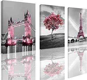 Decor for Bedroom for Girls Pink Paris Theme Room Decor Wall Art Canvas Black and White Art Eiffel Tower Pictures Decorations Tower Paris Eiffel Tower Painting Framed