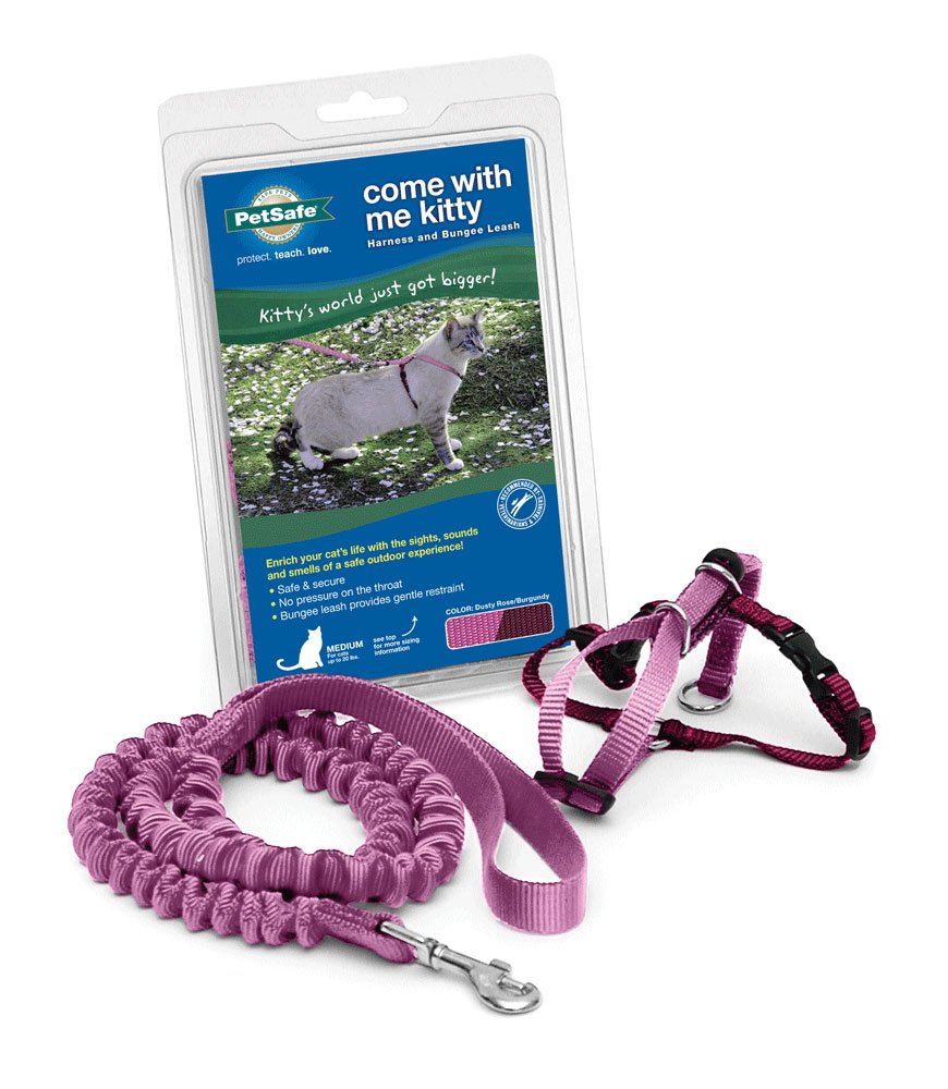 PetSafe Come With Me Kitty Harness and Bungee Leash, Harness for Cats, Medium, Dusty Rose/Burgundy