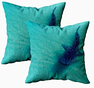 KIOAO Fall Pillow Case, Standard 2Sets 18X18Inch Soft Pillowcase Covers Whale Shark The Biggest Fish in Ocean Huge Gentle Giant Swimming Printed with Both Sides,Christmas Day