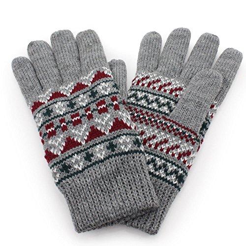 困惑した保証金報いるAness (アネス) ニット手袋 レディース