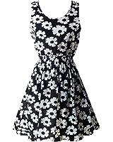 Daxin Women's Floral Chiffon Sleeveless Sundress Summer Tank Mini Dress S-XL