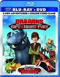 Amazoncom DreamWorks Dragons Gift of The Night Fury