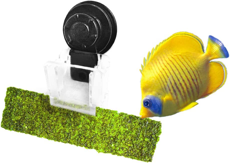 Luffy Aquarium Clip, 4x2 Inches, Plastic, No Metal Parts, Includes Strong Suction Cup, Holds Veggies, Algae, Seaweed Sheets, Betta Bed, Feeding Accessories