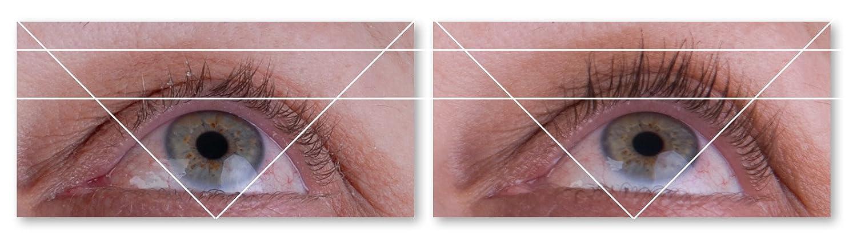 Amazon Lipocils Eyelash Treatment Supplement 034 Fl Oz