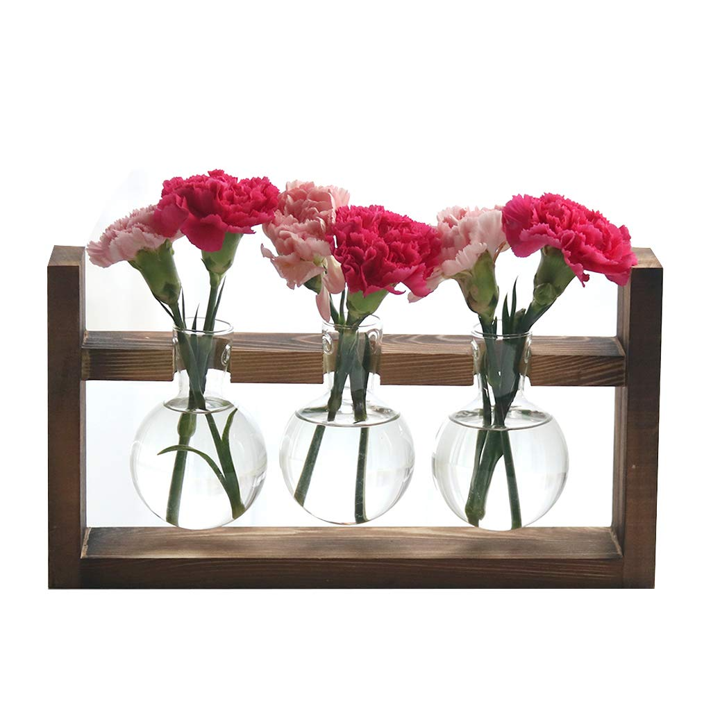 Ivolador Desktop Glass Planter Bulb Vase with Retro Solid Wooden Stand for Hydroponics Plants Home Garden Wedding Decor (3 Bulb Vase)