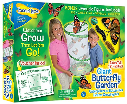 Insect Lore Giant Butterfly Kit: Deluxe 18″ Habitat, Voucher For 5 Caterpillars, Butterfly Play Set