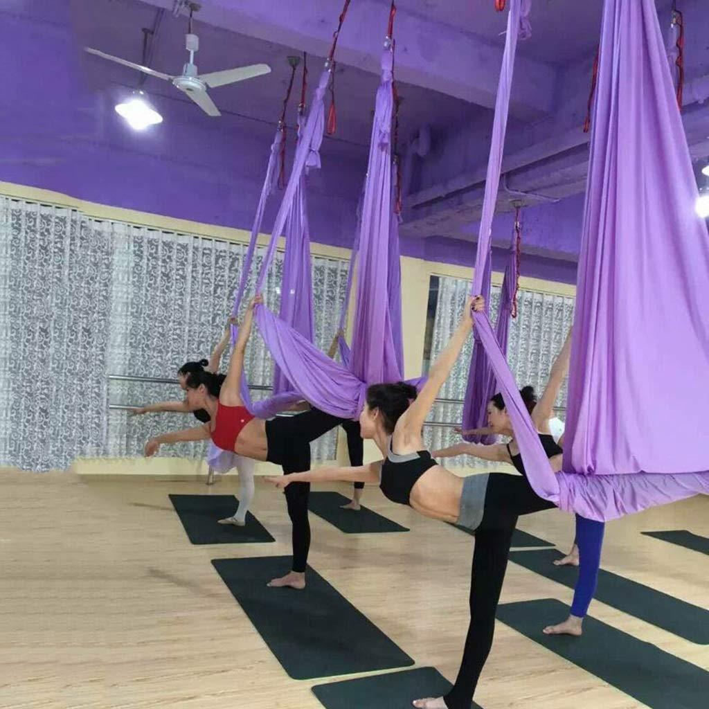 Amazon.com : Yoga Hammock Aerial Yoga Hammock Anti-Gravity ...