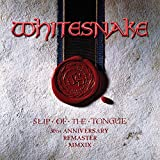 Slip Of The Tongue (Super Deluxe Edition) [2019 Remaster] (6CD/1DVD)