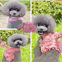 Bro'Bear Princess Floral Velcro Cat & Dog Safety Walking Vest Harness + Matching Lead Leash with Crown Charm (Can Be Pet & Kitty & Puppy Flower Halloween Classics Collection Costume/Photo Apparel/ Holiday Wear/Clothes Party Coat/Wedding Dress)
