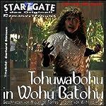 Tohuwabohu in Wohu Batohu (Star Gate 29) | Miguel de Torres