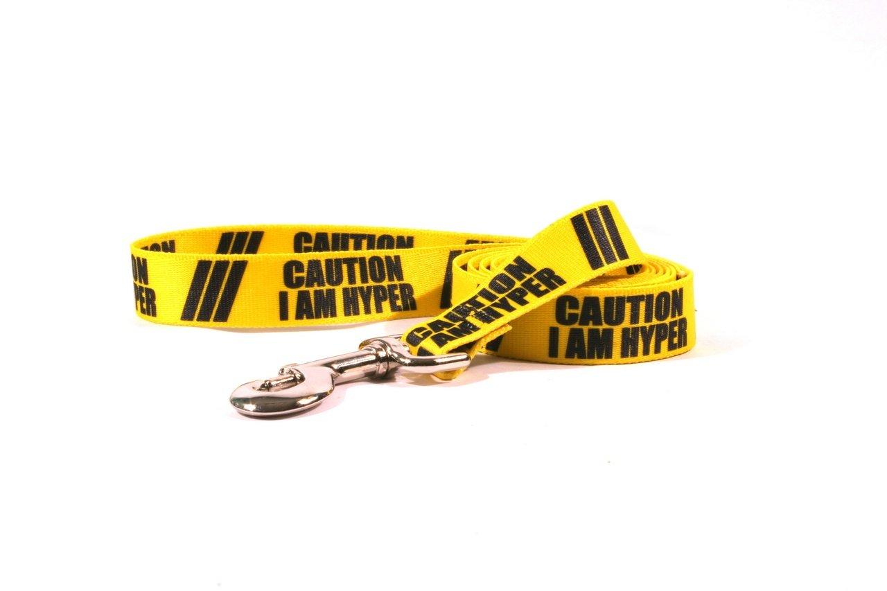Yellow Dog Design Caution I Am Hyper Dog Leash with Easy Grip Comfort Grip Handle, 1'' Wide