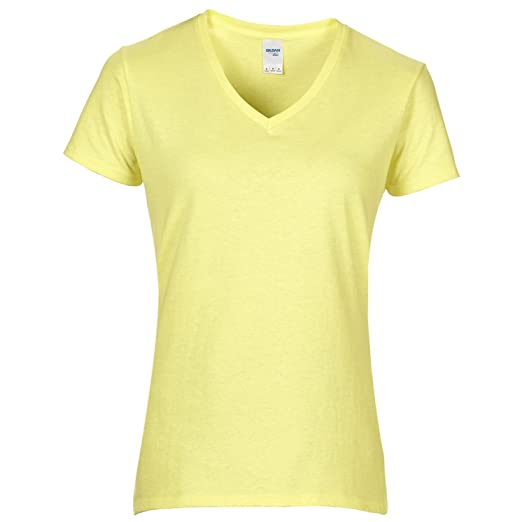 83ab976d93 Gildan Womens/Ladies Premium Cotton V-Neck T-Shirt at Amazon Women's ...