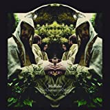 The Courage Of Others by Midlake