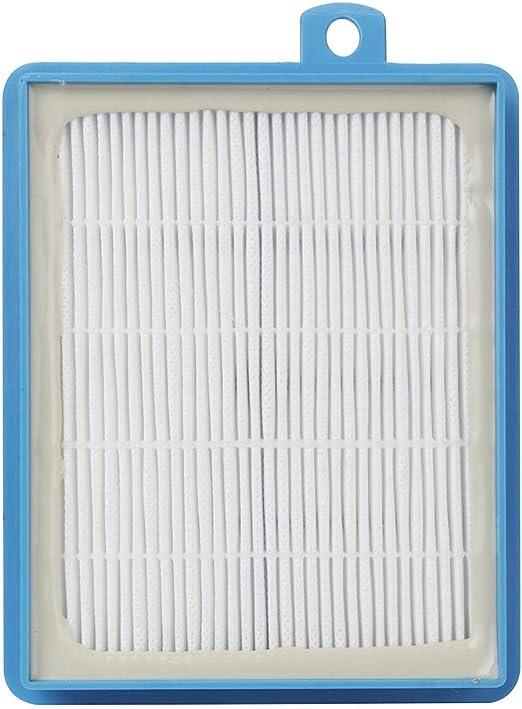 UNBRUVOO H13 HEPA Accesorios de Filtro para Electrolux Harmony Oxygen Oxygen3 Canister aspiradoras: Amazon.es: Hogar
