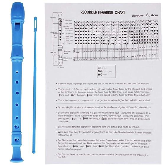 D DOLITY 8 Holes Alto Detachable Clarinet Flute Recorder Flute w