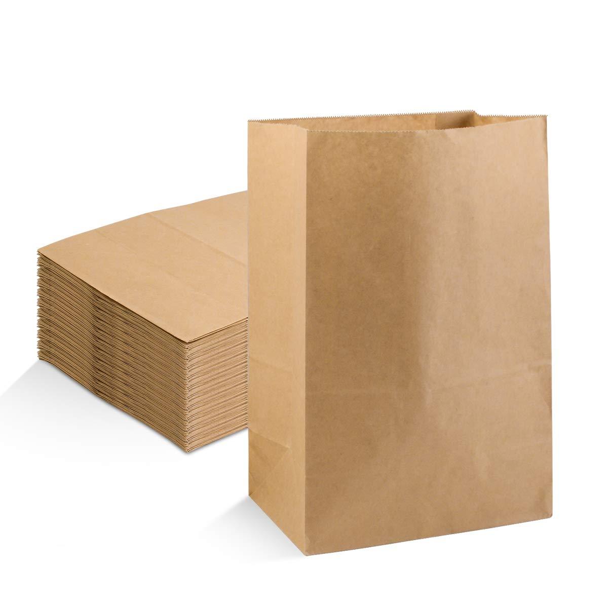 LadyRosian 100 Pack Small Brown Paper Bags (12