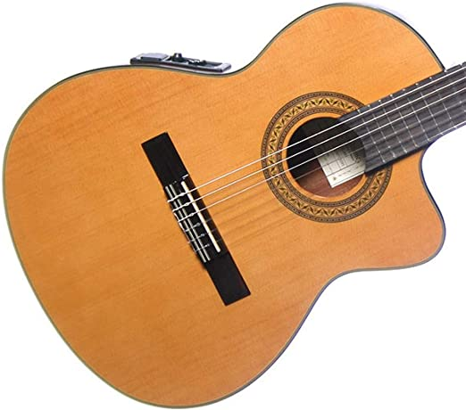 Ibanez GA5TCE-AM - Guitarra clásica electrificada: Amazon.es ...