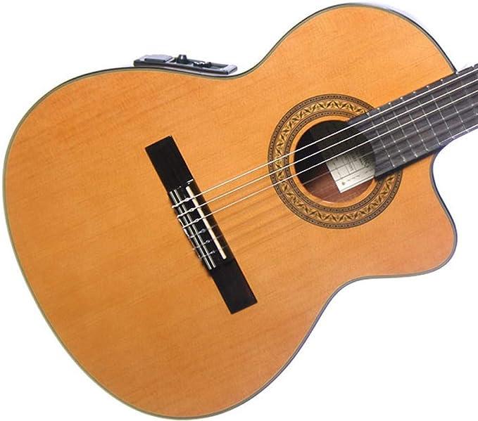 Ibanez GA5TCE-AM - Guitarra clásica electrificada: Amazon.es ...