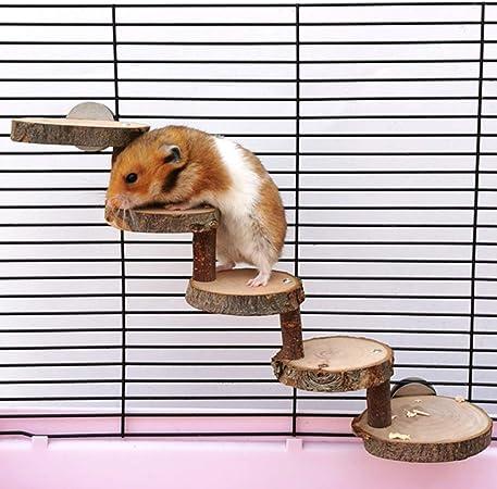 Sahgsa Juguetes de hámster de Rata, Escaleras de hámster Natural Juguetes de Escalera de Madera para Mascotas Juguetes de ratón de Rata de hámster Juguetes para Mascotas: Amazon.es: Hogar