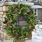 "32"" Dual Color LED Twinkling Holiday Christmas Indoor/Outdoor Artificial Mixed Greenery Wreath"