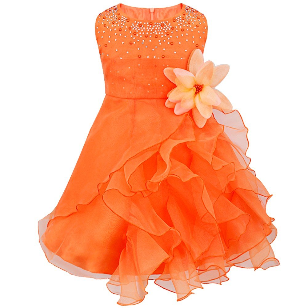 iiniim Vestido Niñas 0 a 3 Años Falda de Tutú con Diamantes de Imitación  Flor Bowknot Vestido de Organza para Fiesta Cumpleaños Bautizo para Bebé  Niña d5717e416ce1